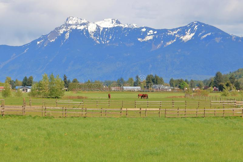 Φυσικό έδαφος αγροκτημάτων και καλυμμένα χιόνι βουνά στοκ εικόνα