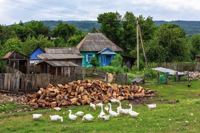 Φυσικό αγροτικό θερινό τοπίο του χωριού αγροτών Ήρεμη αυθεντική ζωή στη ρωσική επαρχία στοκ εικόνα