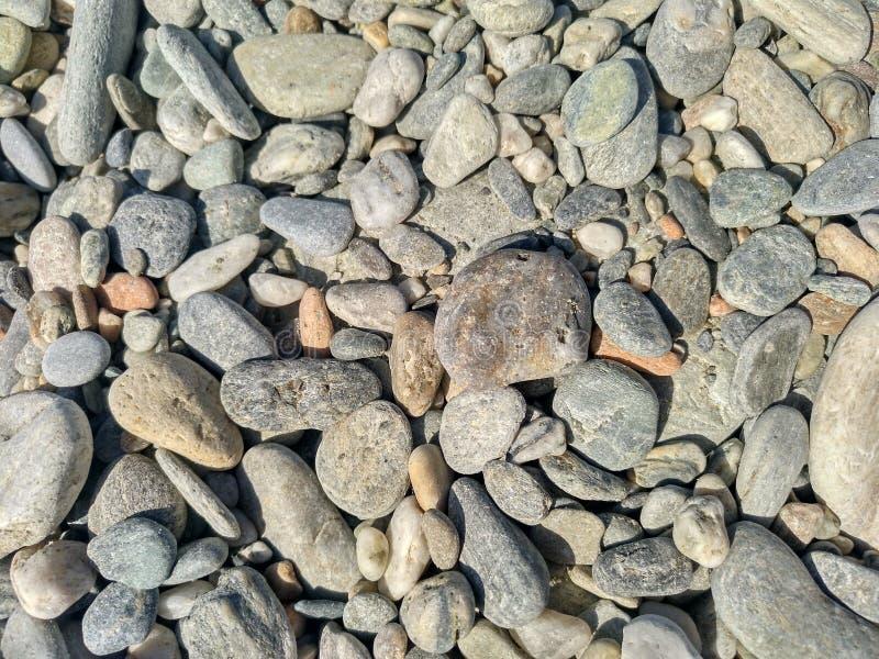 Φυσικό αμμοχάλικο παραλιών στοκ φωτογραφία με δικαίωμα ελεύθερης χρήσης