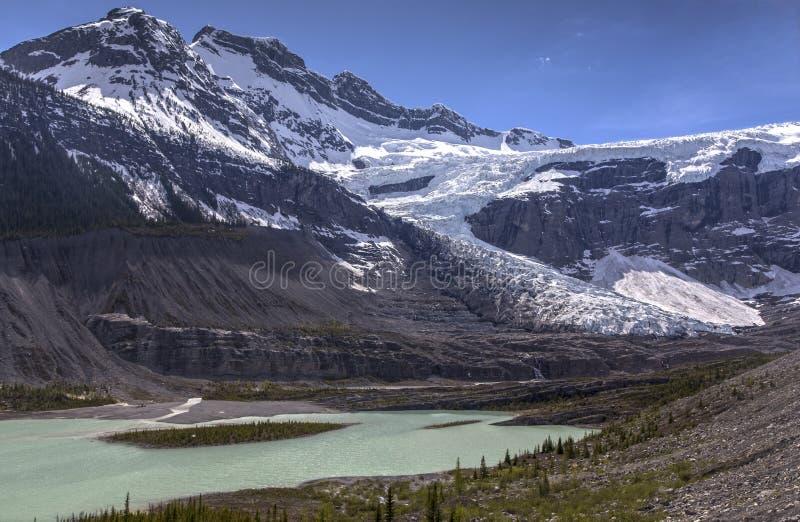 Φυσικό εθνικό πάρκο Banff χώρων στάθμευσης Icefields παγετώνων Lyell στοκ εικόνα