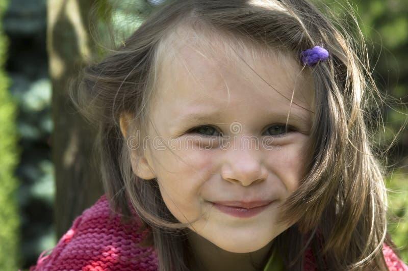 φυσικό θερινό γλυκό κορι στοκ φωτογραφίες