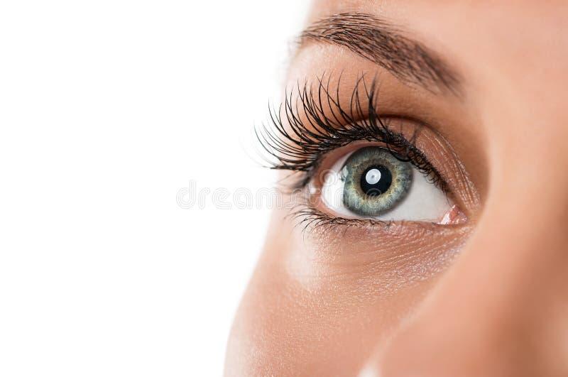 Φυσικό θηλυκό μάτι στοκ εικόνες με δικαίωμα ελεύθερης χρήσης