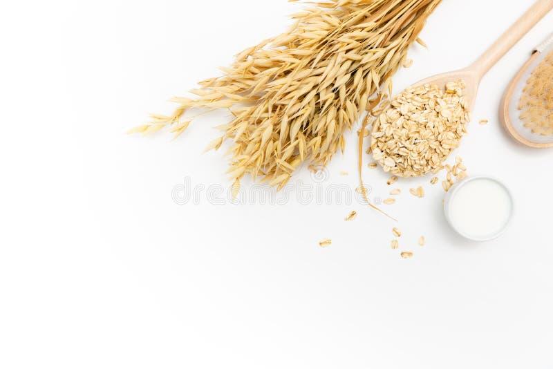 Φυσικό καθαρίζοντας προϊόν δερμάτων για το σώμα detox Οι νιφάδες βρωμών, κρέμα, γάλα βρωμών, σώμα τρίβουν τη βούρτσα, άσπρος πίνα στοκ φωτογραφία με δικαίωμα ελεύθερης χρήσης