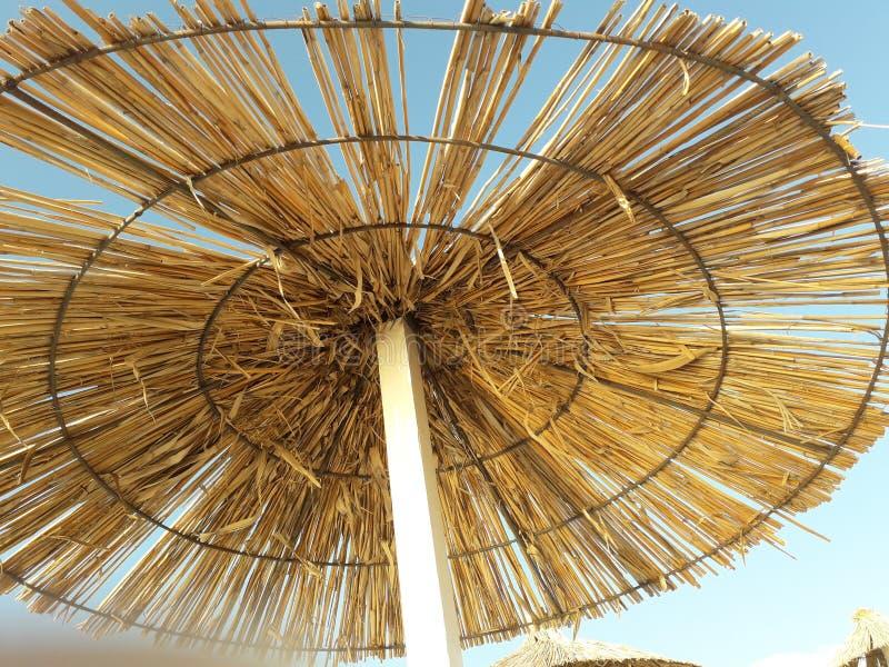 Φυσικό καταφύγιο από τον ήλιο στοκ φωτογραφίες με δικαίωμα ελεύθερης χρήσης