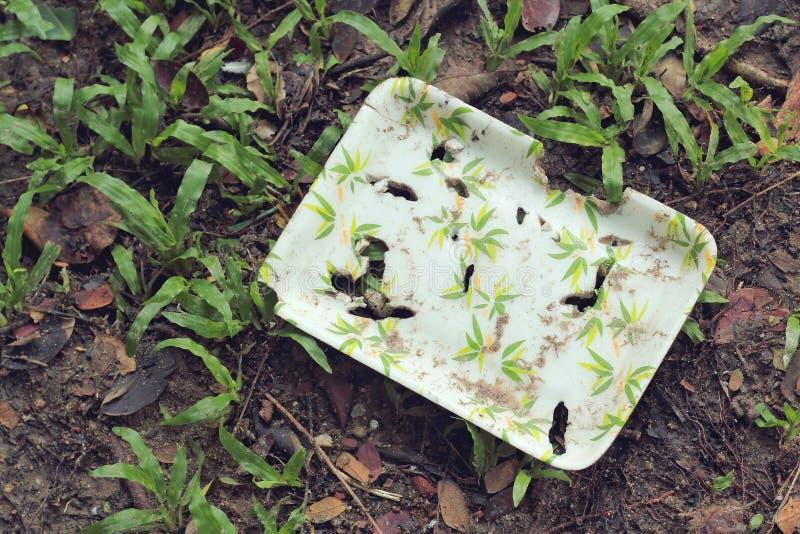 Φυσικό κιβώτιο τροφίμων ινών εγκαταστάσεων στο χώμα στοκ φωτογραφία με δικαίωμα ελεύθερης χρήσης
