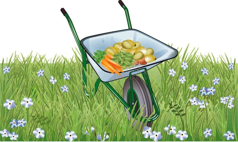 φυσικό λαχανικό ελεύθερη απεικόνιση δικαιώματος
