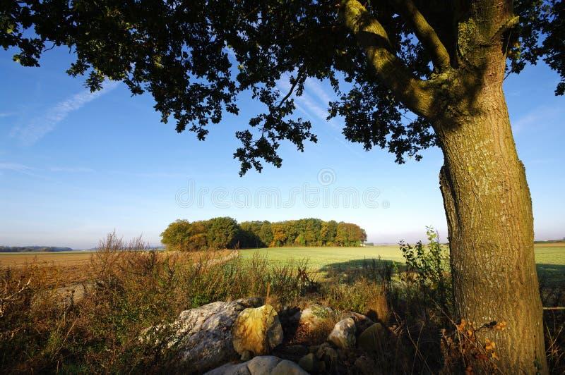 φυσικό πάρκο gatinais της Γαλλία& στοκ φωτογραφία με δικαίωμα ελεύθερης χρήσης
