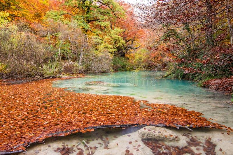Φυσικό πάρκο Urederra στοκ φωτογραφία με δικαίωμα ελεύθερης χρήσης