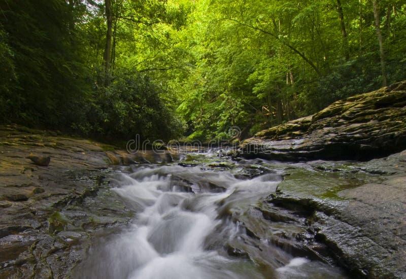 φυσικό ρεύμα της Πενσυλβ& στοκ φωτογραφίες με δικαίωμα ελεύθερης χρήσης