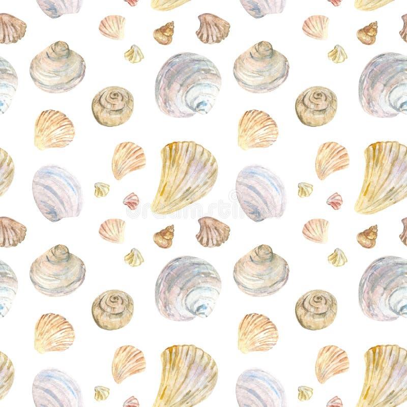 Φυσικό σχέδιο θαλασσινών κοχυλιών χρώματος Watercolor διανυσματική απεικόνιση