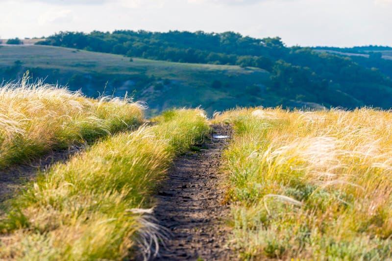 Φυσικό τοπίο επαρχίας με τον αγροτικό βρώμικο δρόμο στοκ εικόνα
