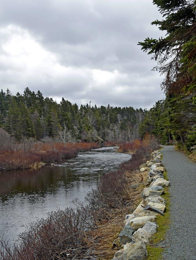 Φυσικό τοπίο ποταμών Manuels την άνοιξη στοκ εικόνα