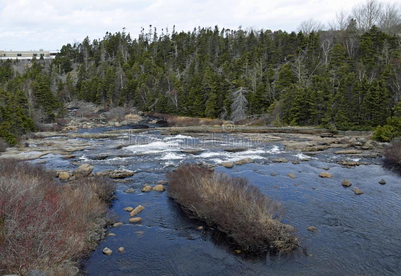 Φυσικό τοπίο ποταμών Manuels την άνοιξη στοκ εικόνες