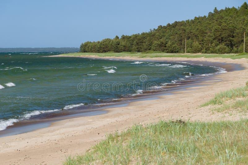 Φυσικό τοπίο της παραλίας της θάλασσας της Βαλτικής στοκ φωτογραφία
