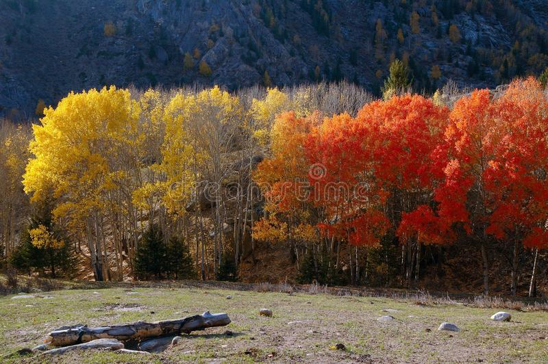 Φυσικό τοπίο στοκ φωτογραφία με δικαίωμα ελεύθερης χρήσης