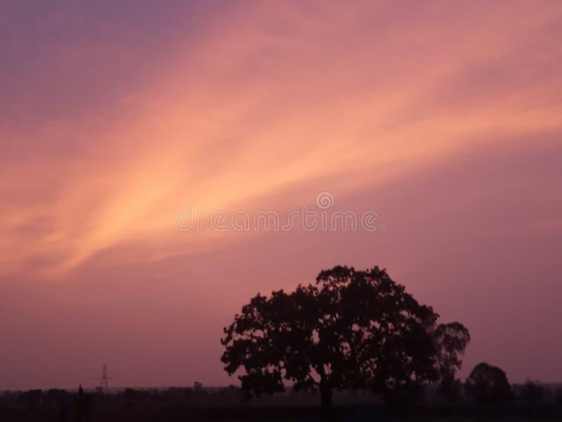 Φυσικό φωτεινό καταπληκτικό PIC δέντρων σύννεφων πορτοκαλί στοκ φωτογραφίες με δικαίωμα ελεύθερης χρήσης