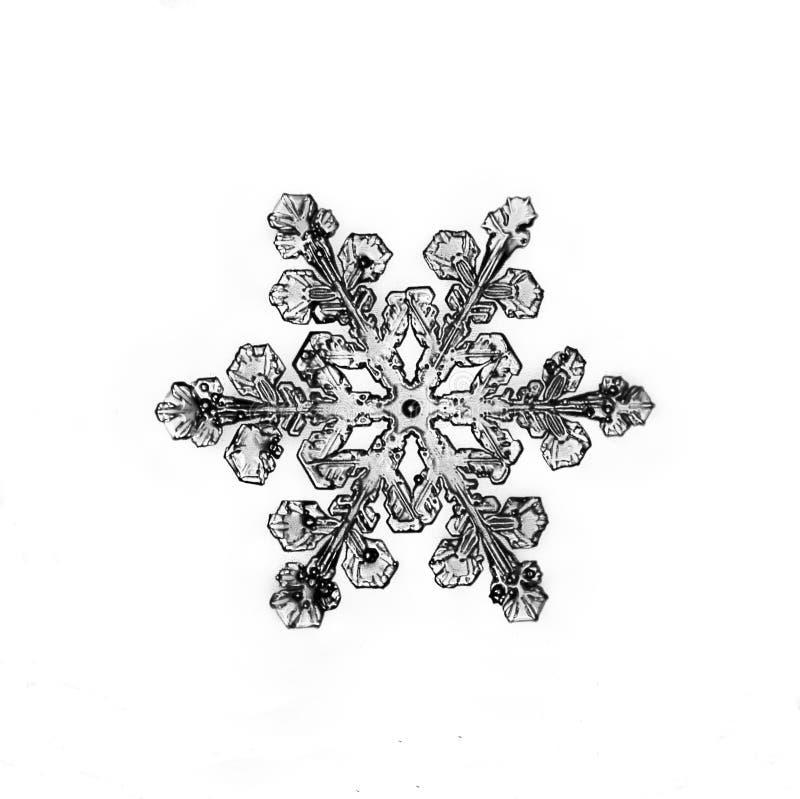 Φυσικό snowflake κρυστάλλου μακρο κομμάτι του πάγου στοκ φωτογραφία με δικαίωμα ελεύθερης χρήσης