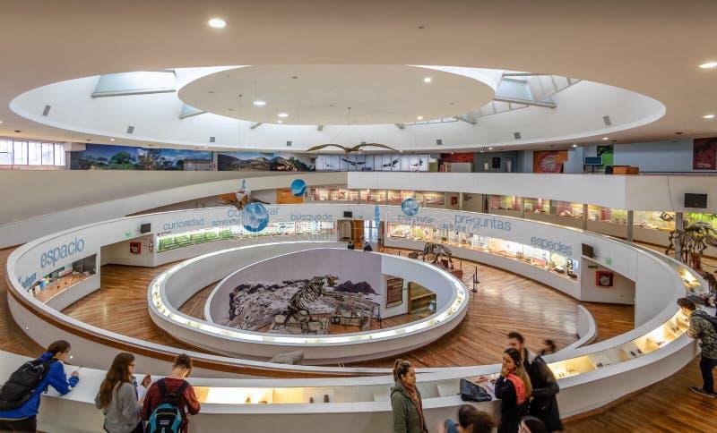 Φυσικών επιστημών μουσείων Museo Provincial de Ciencias Naturales εσωτερικό - Κόρδοβα, Αργεντινή στοκ φωτογραφία με δικαίωμα ελεύθερης χρήσης