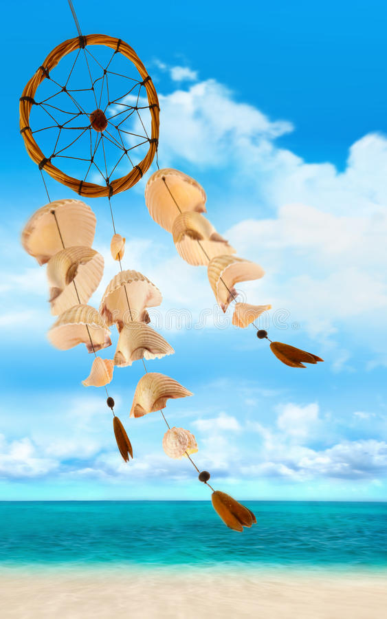 φυσώντας αέρας κοχυλιών &the στοκ εικόνες με δικαίωμα ελεύθερης χρήσης