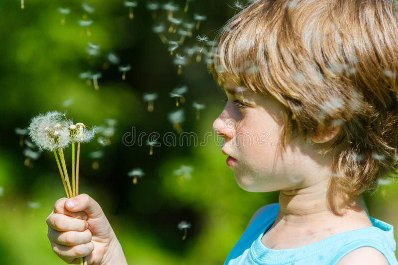 Φυσώντας πικραλίδα παιδιών υπαίθρια σε πράσινο στοκ εικόνα