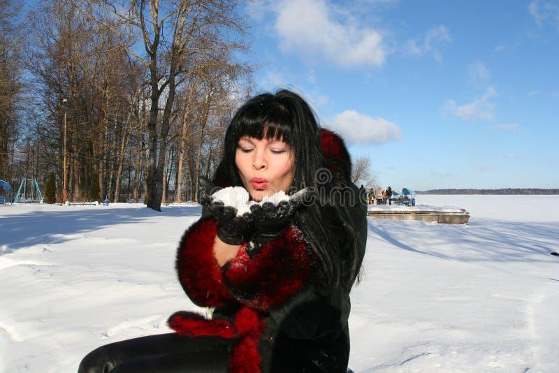 φυσώντας χιόνι στοκ εικόνες