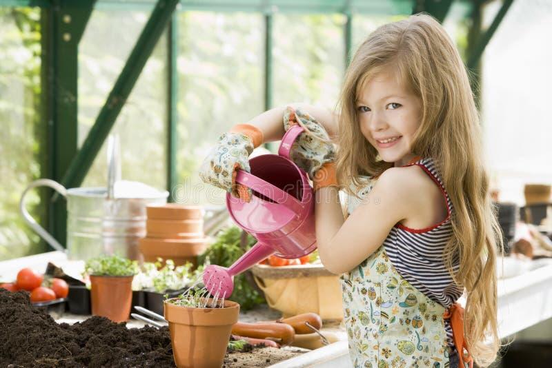 φυτά θερμοκηπίων κοριτσιών που ποτίζουν τις νεολαίες στοκ εικόνα