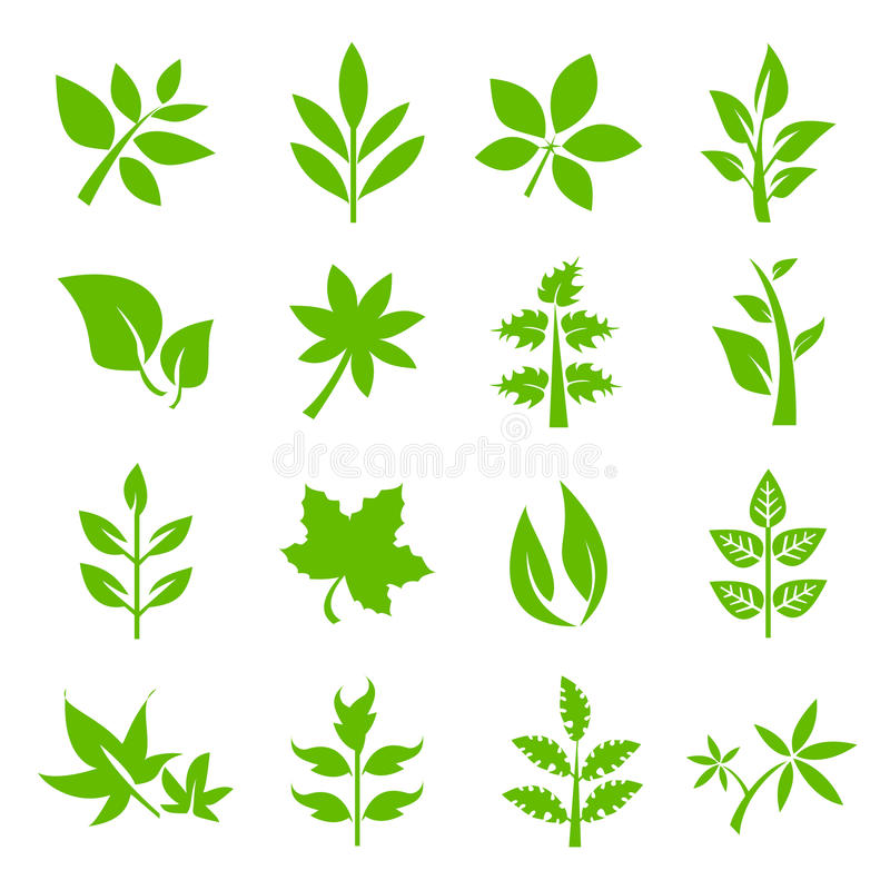 Φυτά και φύλλα διανυσματική απεικόνιση
