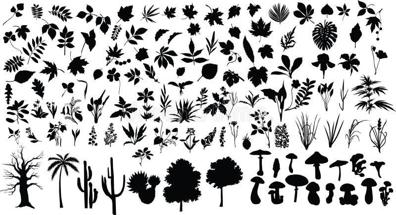 φυτά απεικόνιση αποθεμάτων