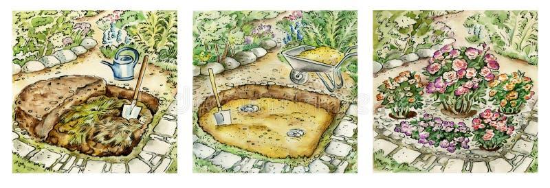 φυτεύει την κηπουρική με θάμνους αυξήθηκε απεικόνιση αποθεμάτων