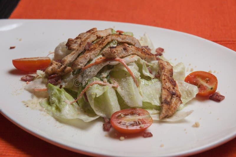 Φυτική σαλάτα κοτόπουλου στοκ φωτογραφία με δικαίωμα ελεύθερης χρήσης