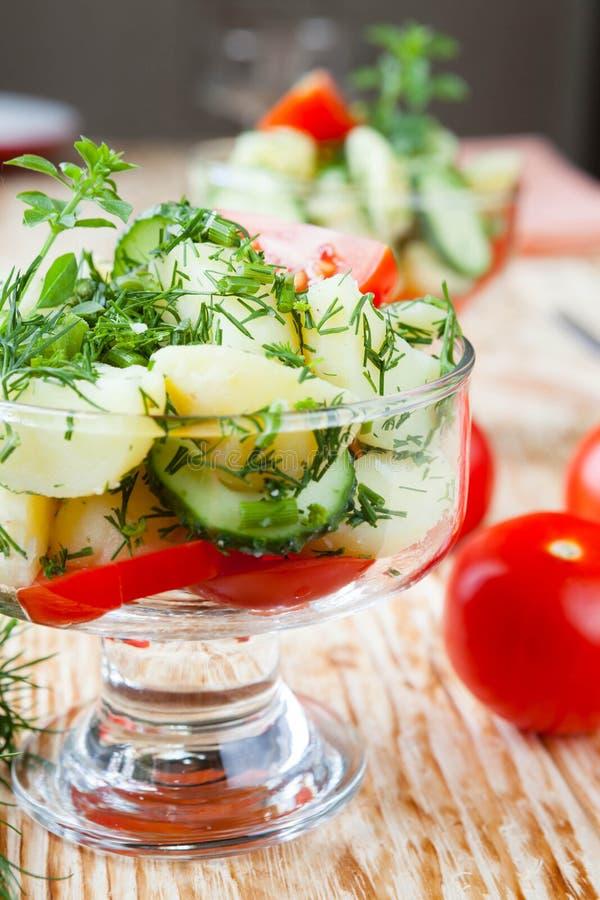 Φυτική σαλάτα με τις καινούριες πατάτες στοκ εικόνα