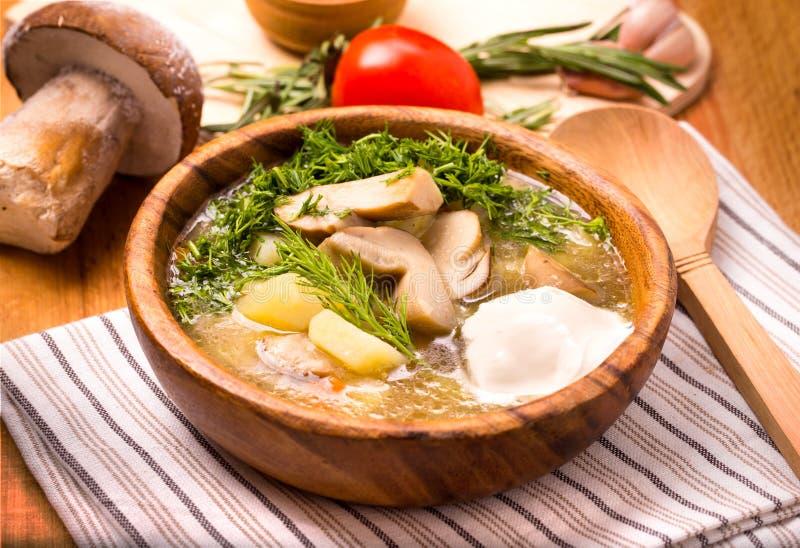 Φυτική σούπα μανιταριών στοκ φωτογραφίες με δικαίωμα ελεύθερης χρήσης