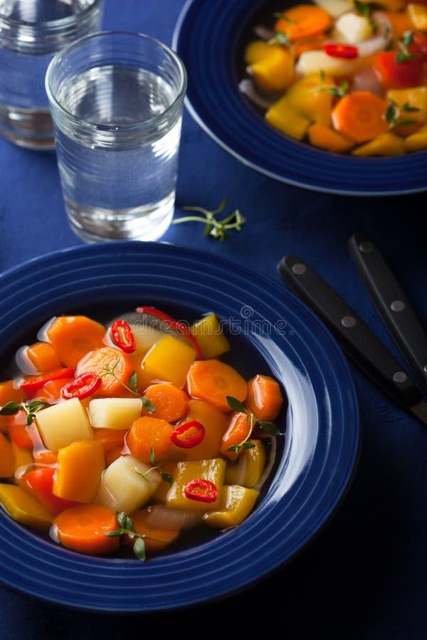 Φυτική σούπα στοκ εικόνα με δικαίωμα ελεύθερης χρήσης