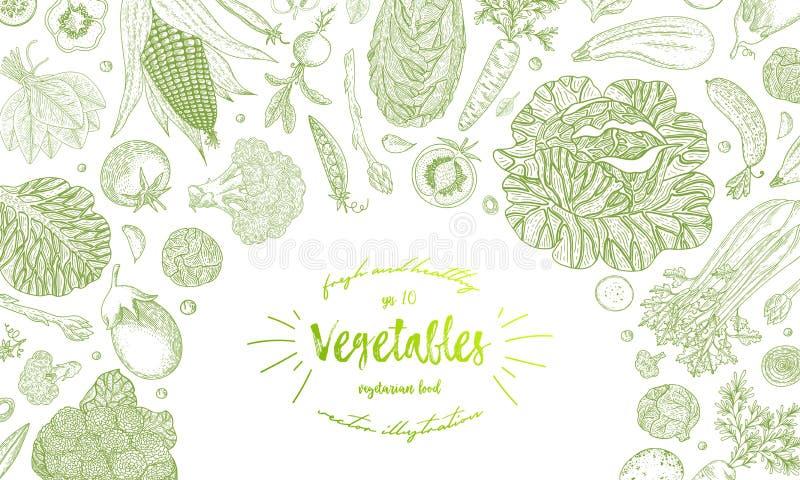 Φυτική συρμένη χέρι εκλεκτής ποιότητας διανυσματική απεικόνιση Χορτοφάγο σύνολο οργανικών προϊόντων Μπορέστε να χρησιμοποιηθείτε  διανυσματική απεικόνιση