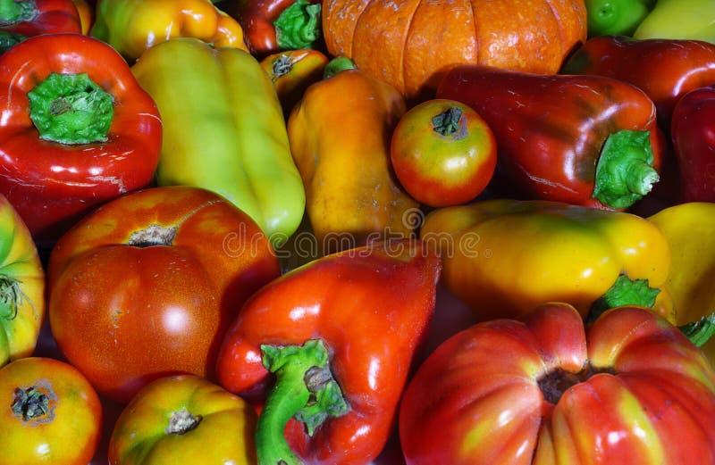 Φυτικός τάπητας, ένα όμορφο επίστρωμα των φυσικών λαχανικών, ένα όμορφο υπόβαθρο για τα διαφορετικά θέματα, ένα αρχικό presentati στοκ εικόνες