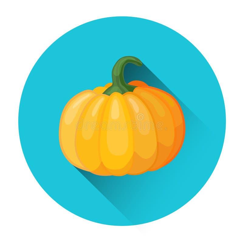 Φυτικό εικονίδιο κολοκύθας απεικόνιση αποθεμάτων