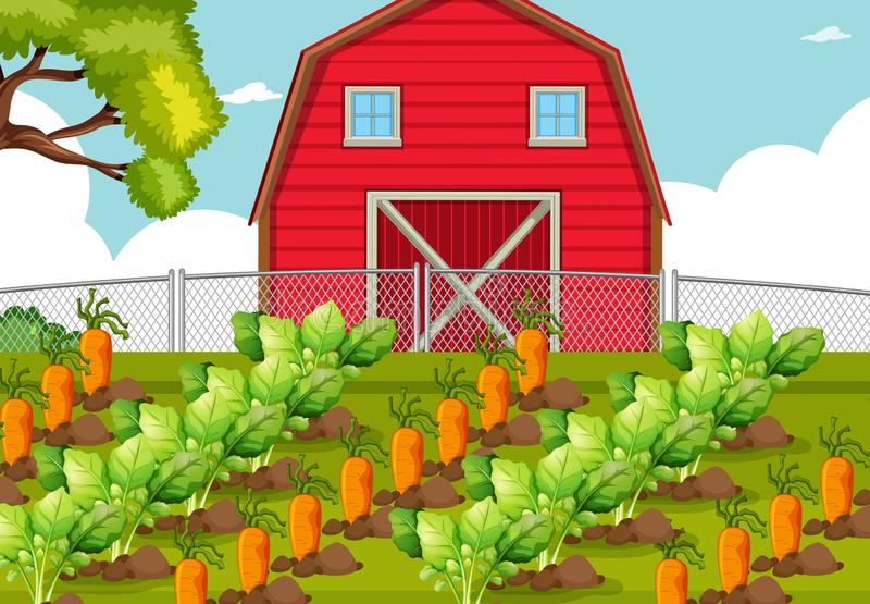 Φυτικό μπάλωμα σε ένα αγρόκτημα απεικόνιση αποθεμάτων