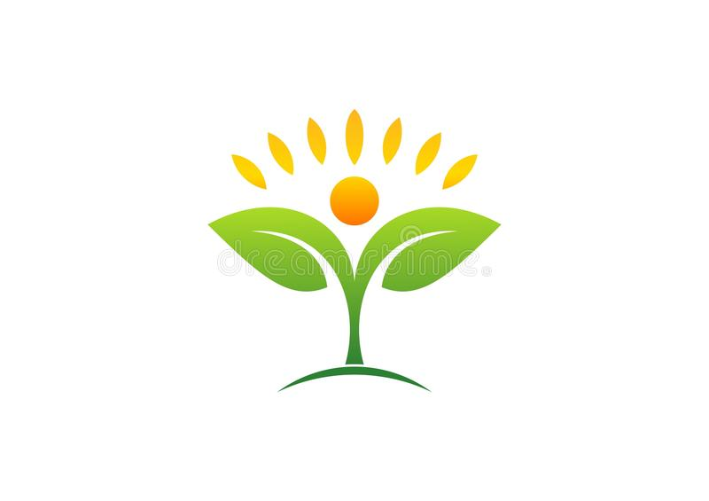 Φυτό, άνθρωποι, φυσικός, λογότυπο, υγεία, ήλιος, φύλλο, βοτανική, οικολογία, σύμβολο και εικονίδιο ελεύθερη απεικόνιση δικαιώματος