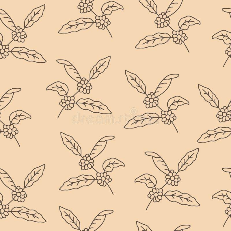 Φυτό καφέ με το φύλλο, μούρο, φασόλι καφέ Άνευ ραφής σχέδιο με το δέντρο καφέ απεικόνιση αποθεμάτων