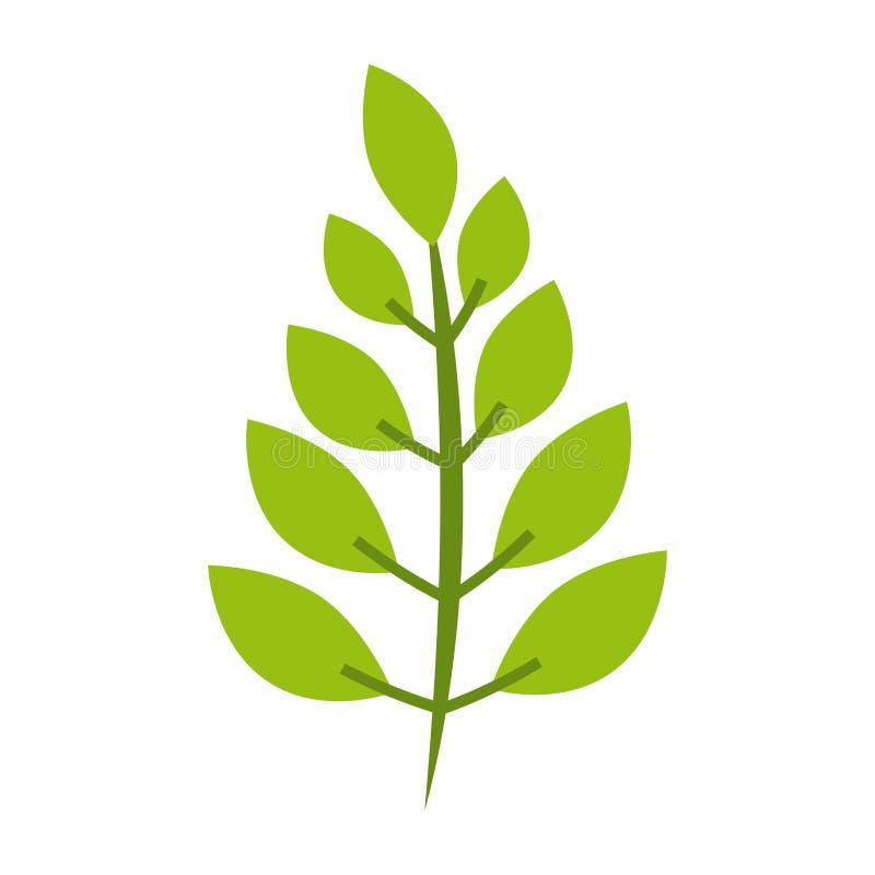 Φυτό με τα φύλλα διανυσματική απεικόνιση
