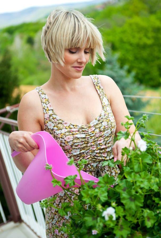 Φυτό ποτίσματος γυναικών στοκ φωτογραφία με δικαίωμα ελεύθερης χρήσης