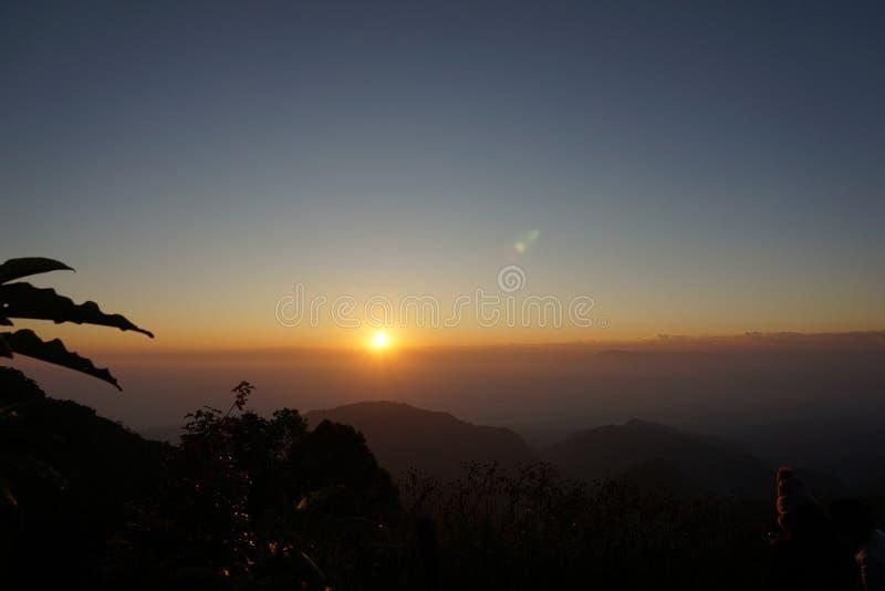 Φυτό φύλλων σκιαγραφιών στο ηλιοβασίλεμα στη βόρεια Ταϊλάνδη στοκ φωτογραφία