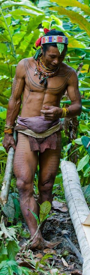 Φυλή Mentawai ατόμων στη ζούγκλα που συλλέγει τις εγκαταστάσεις στοκ εικόνα με δικαίωμα ελεύθερης χρήσης