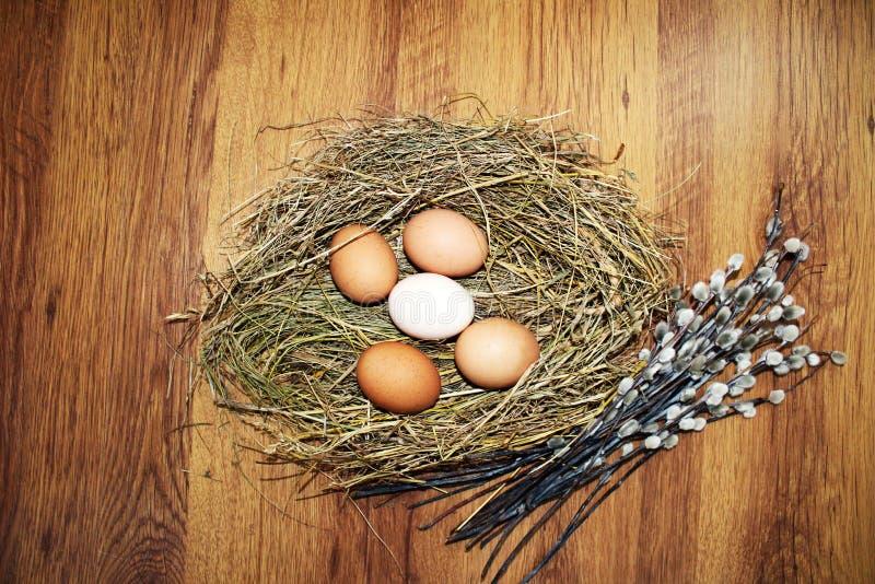 φωλιά αυγών Πάσχας στοκ εικόνες