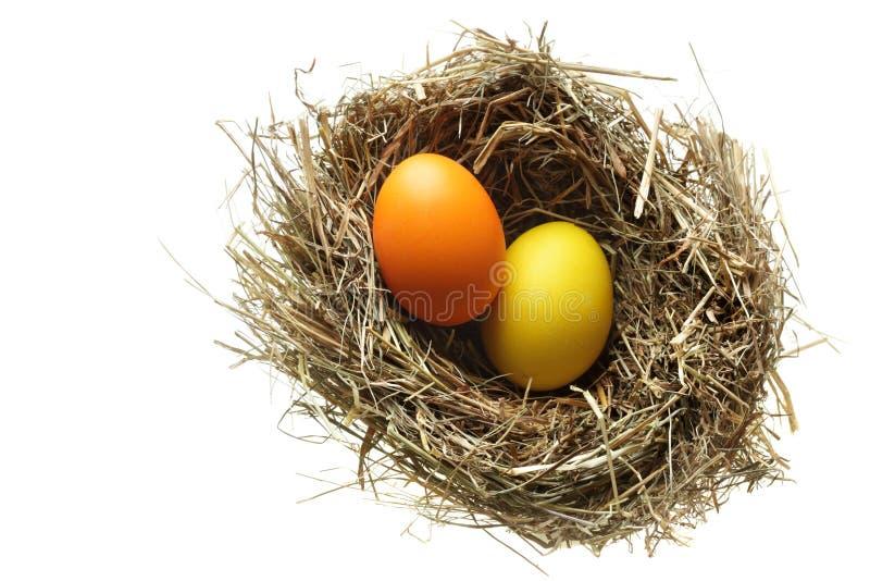 Download φωλιά αυγών Πάσχας στοκ εικόνες. εικόνα από δώρο, απομόνωση - 13188866