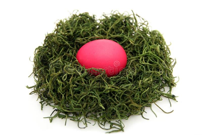 Download φωλιά αυγών στοκ εικόνες. εικόνα από ροζ, χλόη, άνοιξη - 525518