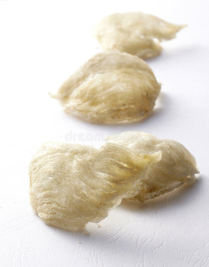 Φωλιά πουλιού των τροφίμων στοκ εικόνες