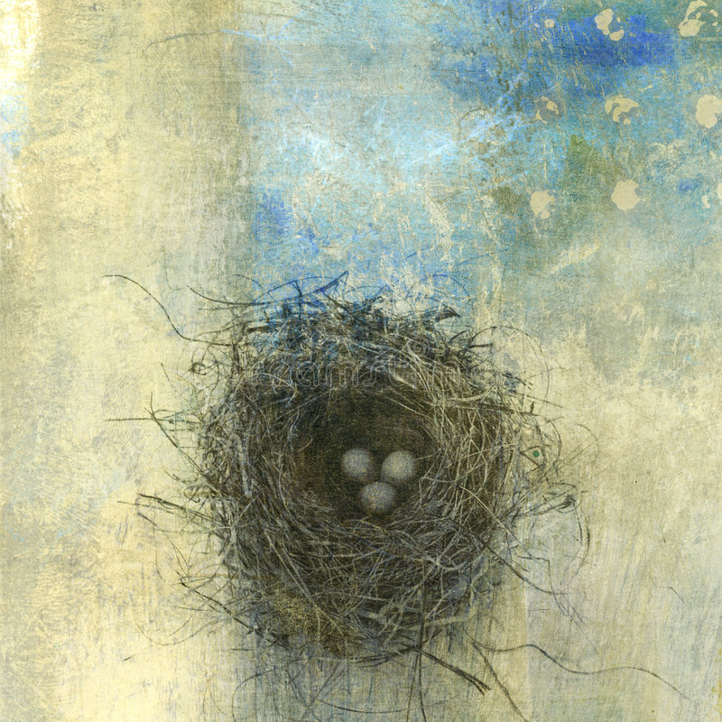 φωλιά πουλιών απεικόνιση αποθεμάτων