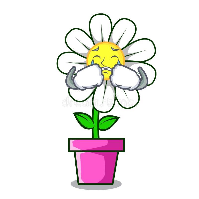 Φωνάζοντας κινούμενα σχέδια μασκότ λουλουδιών μαργαριτών απεικόνιση αποθεμάτων