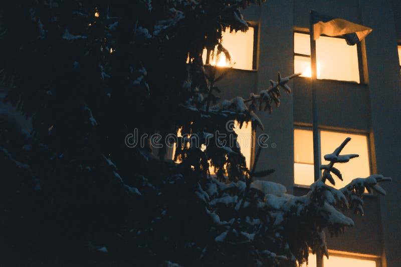 Φως από τα παράθυρα του πολυόροφου κτιρίου το χειμερινό χιονώδες βράδυ στοκ εικόνες